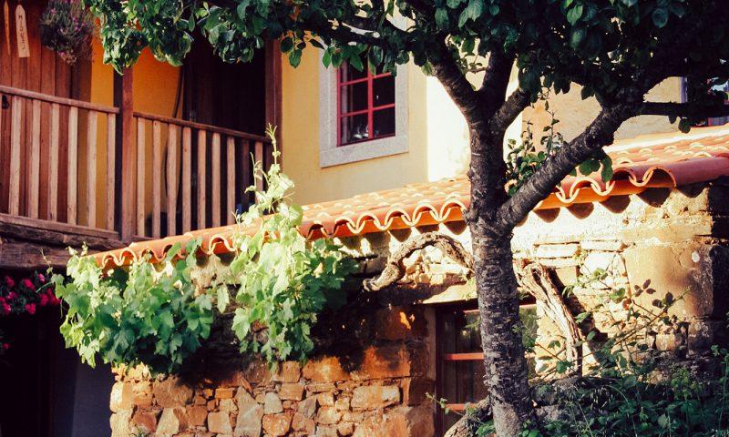 in Gravito's house n°1